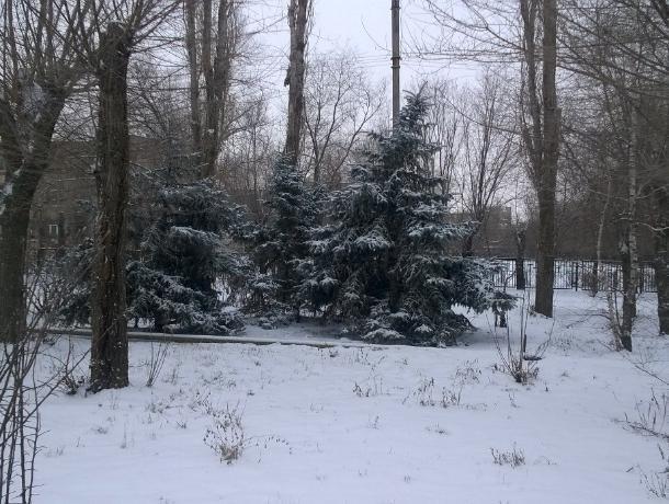 Весь город Волжский ночью завалило снегом