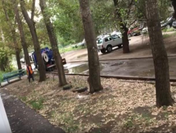 Мою маму едва не убило дерево на Кирова, - волжанка