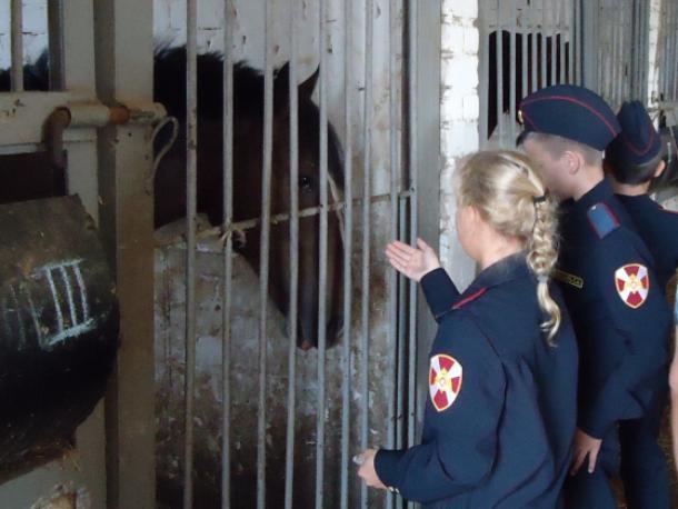 Дети смогли пообщаться со служебными животными