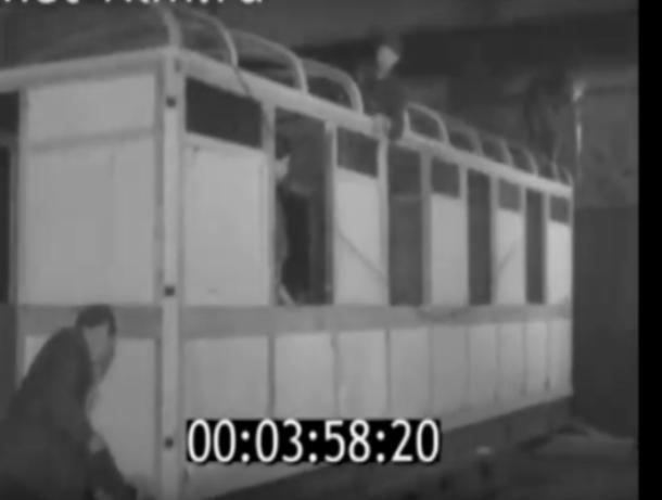 История забытого волжского завода попала на кинопленку
