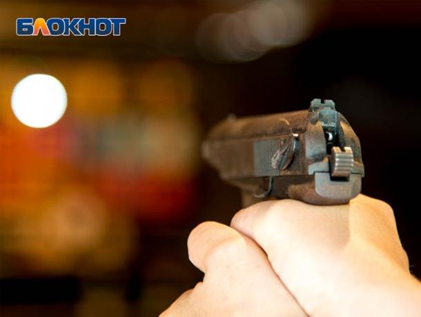 При спасении девочки от овчарки полицейский применил оружие