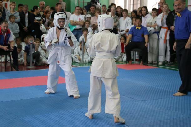 Волжская команда каратистов завоевала первое место