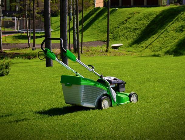 Город выделяет шестьсот шестьдесят тысяч на покупку газонокосилок