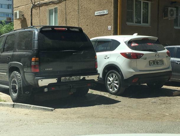Спецагенты в Волжском скрывают госномера авто на зеленой зоне