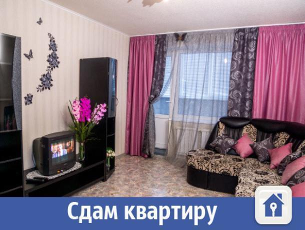 В Волжском сдают комфортабельные квартиры на сутки