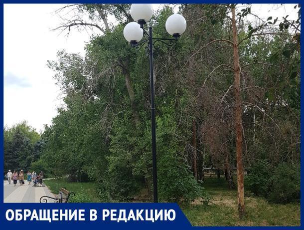 «Фонари в парке, того и гляди, придавят кого-нибудь», - волжанка