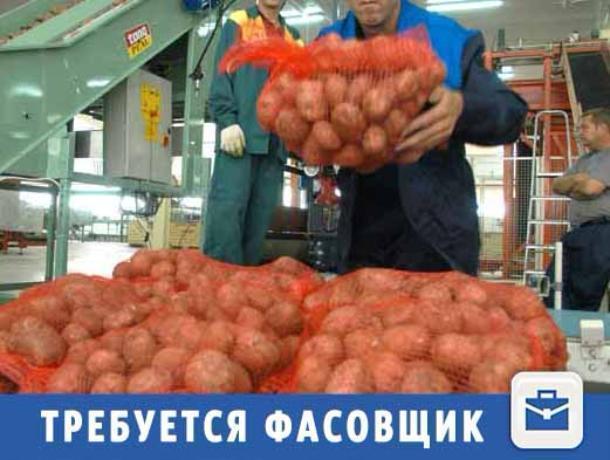 Быстрого фасовщика ждут в отделе овощей в Волжском