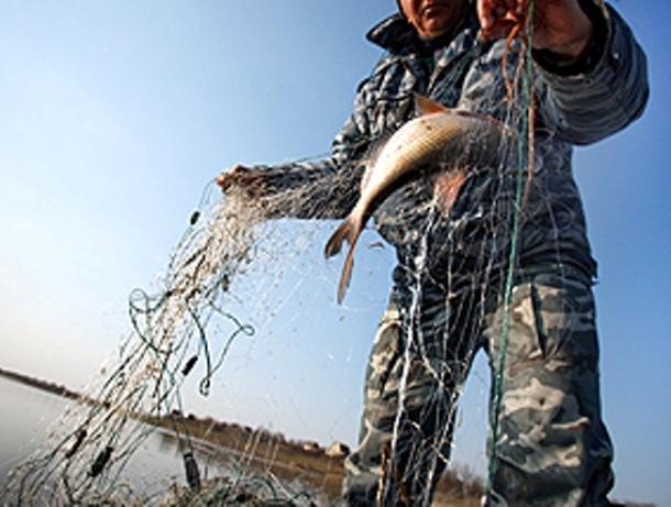 На рыбаков-браконьеров завели уголовное дело в Волжском