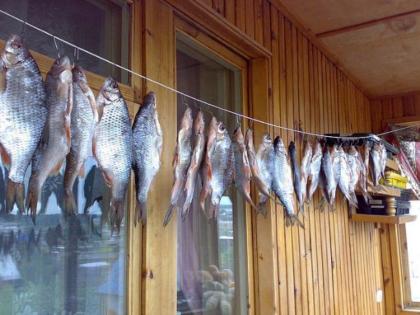Поели вяленой рыбки и скончались
