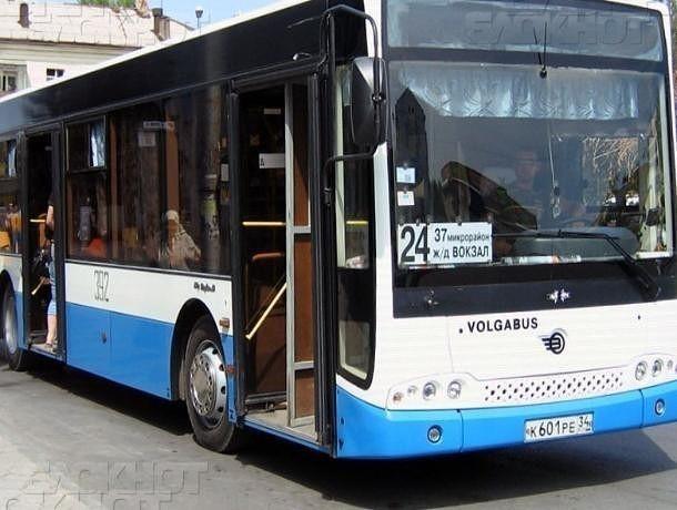 Продлен срок временного маршрута автобусов