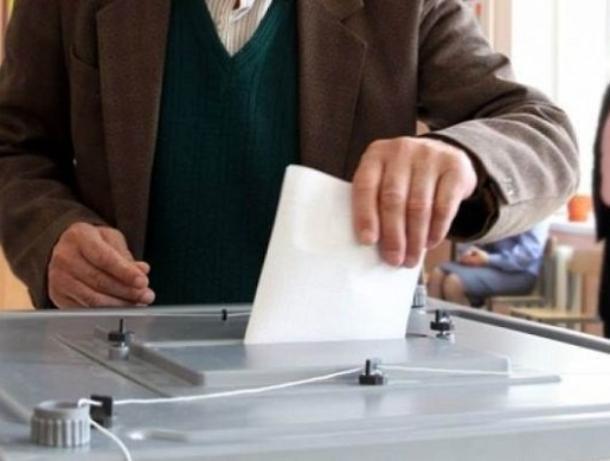 Волжане игнорируют выборы депутатов гордумы