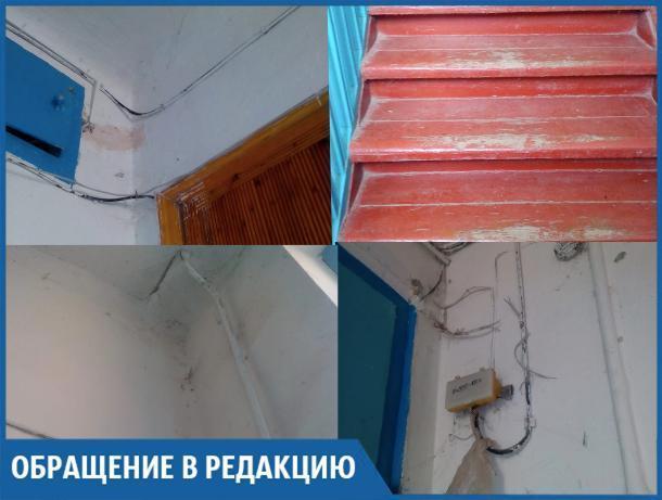 В стенах квартир живут мыши и огромные тараканы, - волжанка