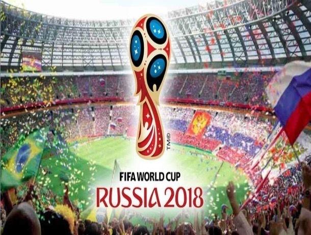 Волжанам предложили стать контролерами на матчах чемпионата мира по футболу 2018 года