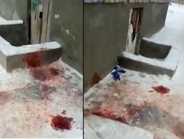 Кровавое убийство произошло в Волжском в новогоднюю ночь
