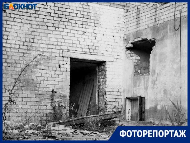 Окраины города Волжского превратились в хоррор