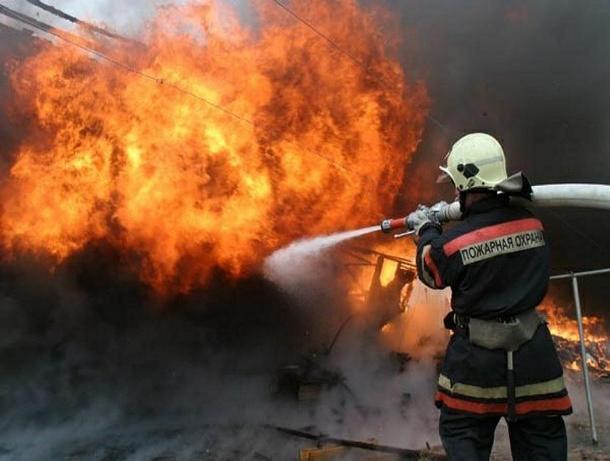 Поздно ночью в Волжском загорелась Skoda Fabia по неизвестной причине