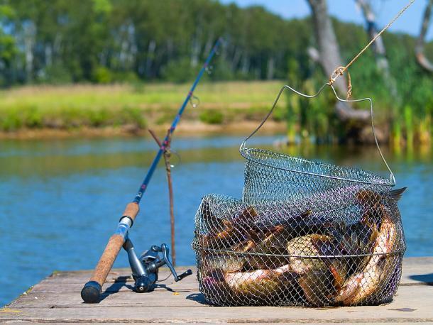 «Народный рыболовный фестиваль» состоится в Волжском