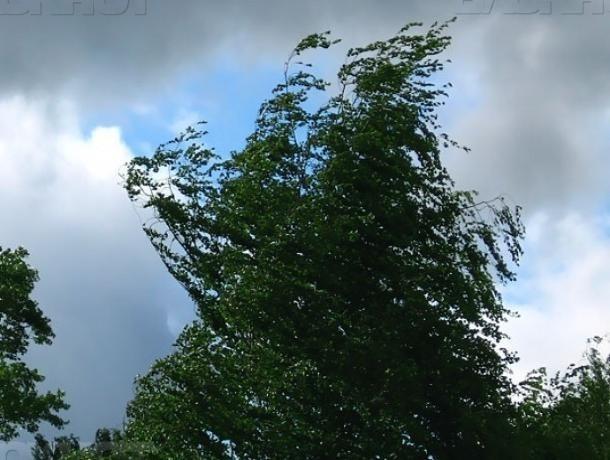 ВВолгоградской области предполагается резкое ухудшение погоды— МЧС