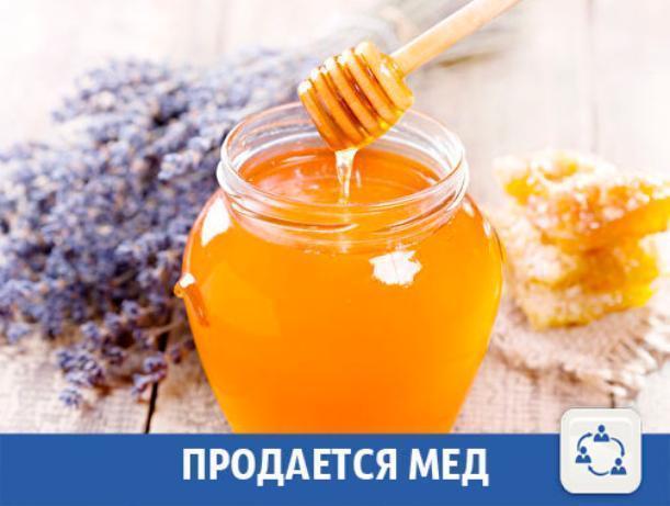В Волжском продается вкусный мед
