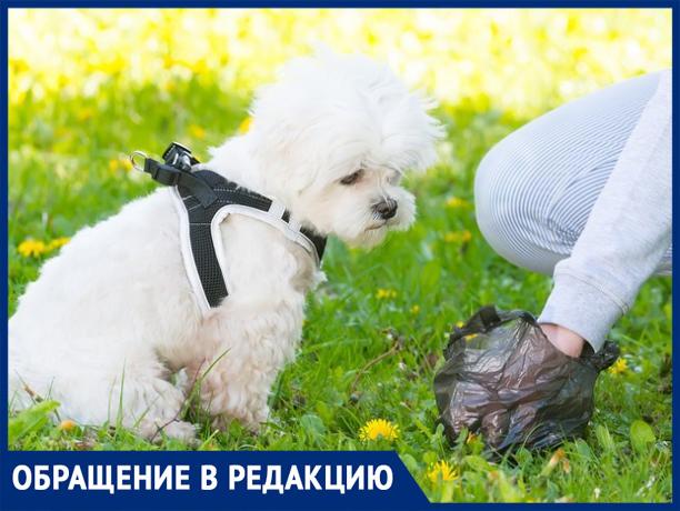 «Владельцы собак совсем обнаглели», - волжанка