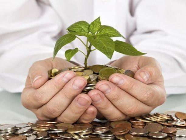 Сельское хозяйство - лидер по получению дохода в регионе