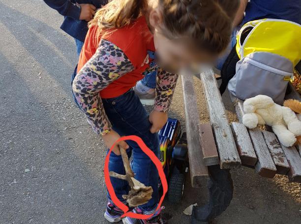 Детские ручки разворотили зеленую площадку в парке Волжского на глазах у своих равнодушных мам