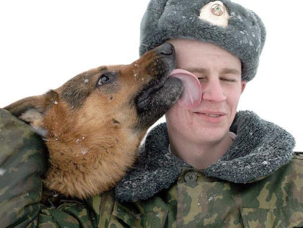 Большинство призывников из Волжского служат в сухопутных войсках