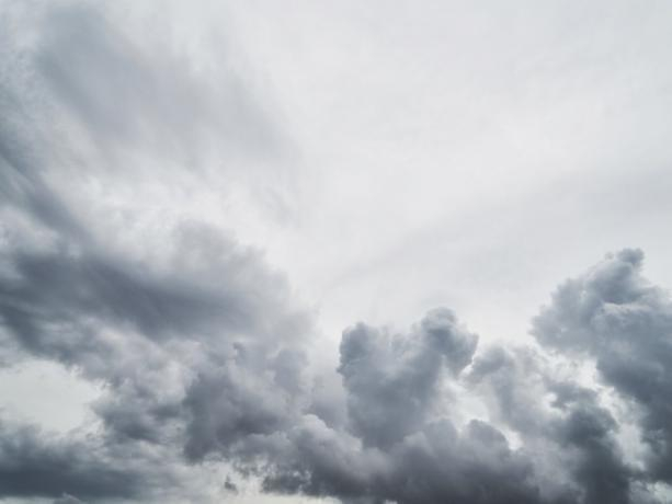 +16 и сильные порывы ветра ждут волжан в воскресенье