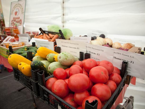 Овощная ярмарка и выставка современной техники ждет волжан