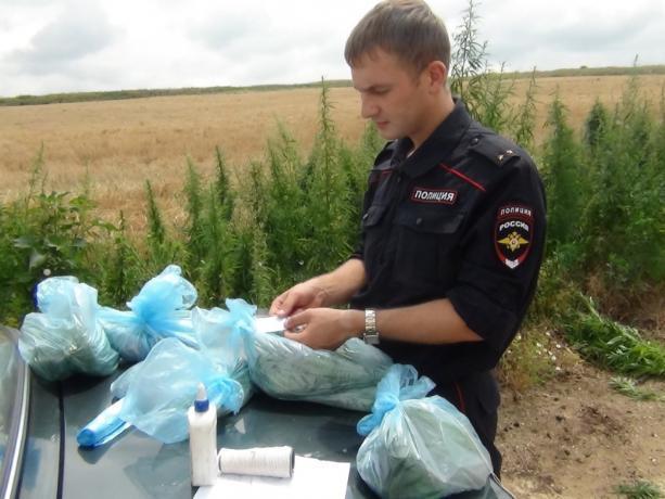 В Волжском ведется борьба с распространением наркотиков
