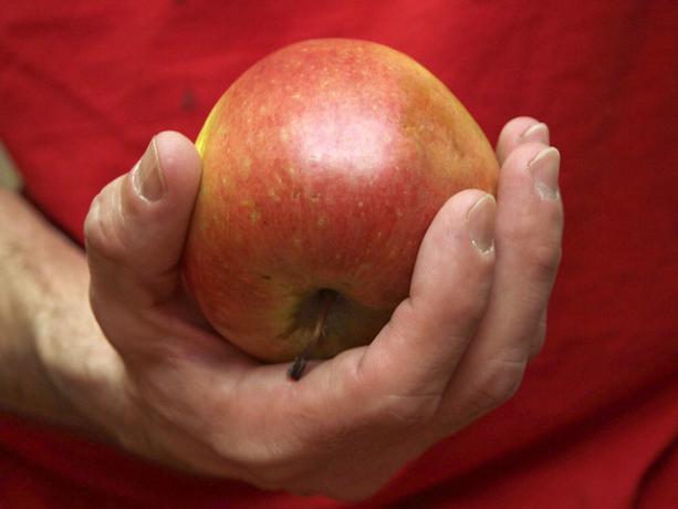 Отчим зверски убил ребенка из-за яблока