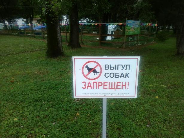 В Волжском должны появиться специальные места для выгула животных
