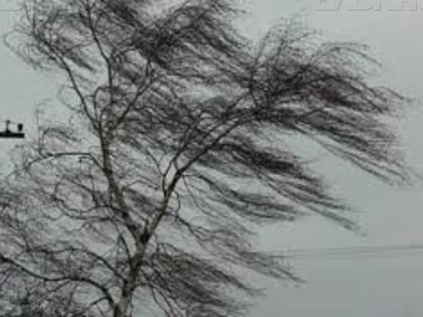 Ветреную погоду в день Крещения Господня пообещали в Волжском