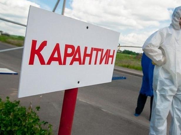 В Среднеахтубинском районе более восьми тысяч гектаров попало под карантин