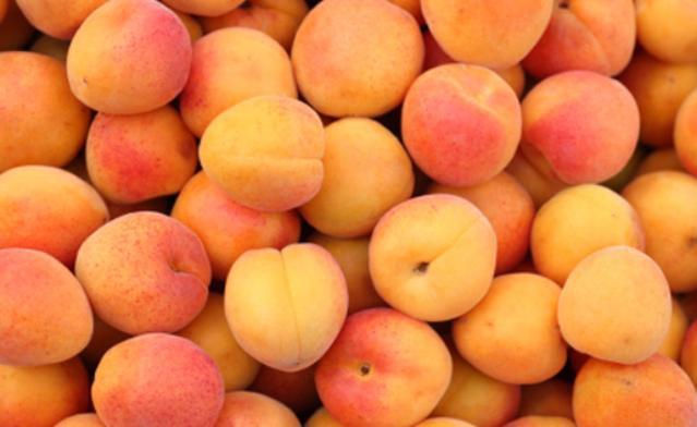 Картинки по запросу фото абрикосов