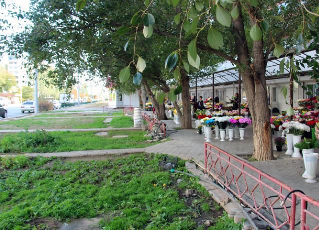 Депутаты взяли под контроль создание парковки возле цветочного рынка