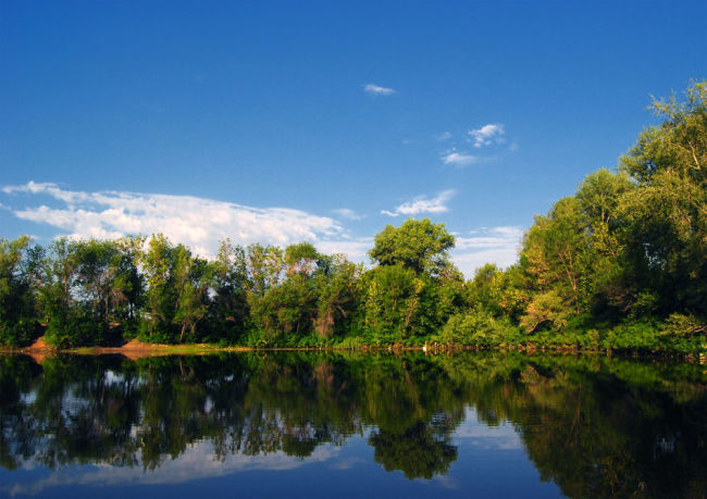 В Волго-Ахтубинскую пойму подано более 8 млн кубометров воды