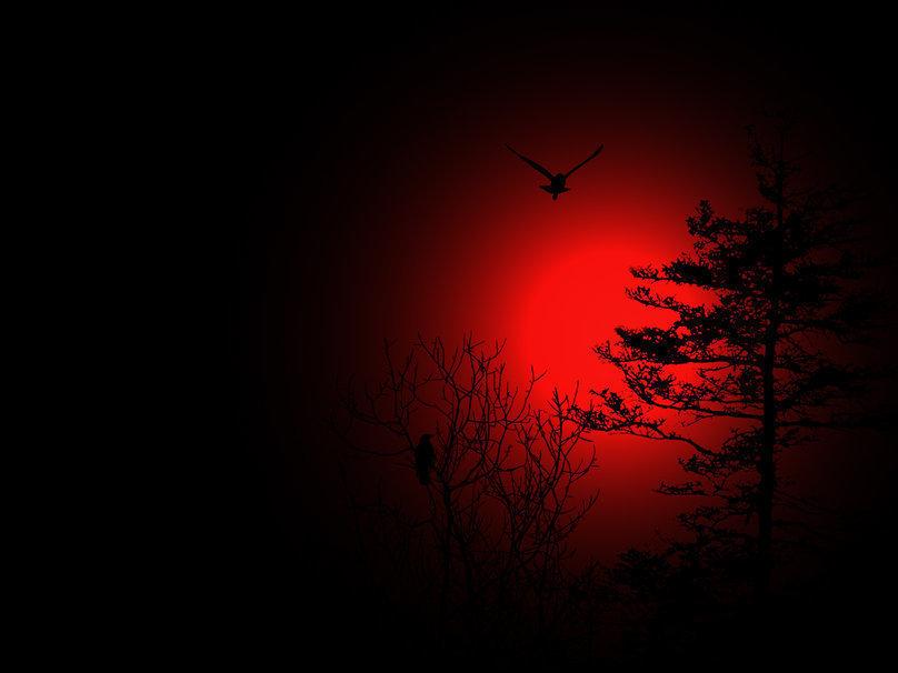 Над Волжским взойдет «кровавая Луна», предвещающая конец света