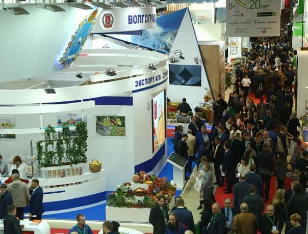 Среднеахтубинские фермеры взяли «золото» на Всероссийской выставке