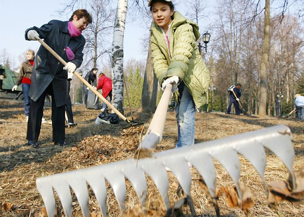 Сотрудники Волго-Ахтубинского парка очищают леса от мусора