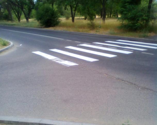 В Волжском появилась «зебра» в никуда