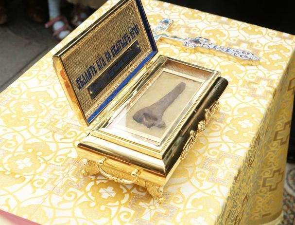 В Волжский привезли мощи святителя Феофана, Затворника Вышенского