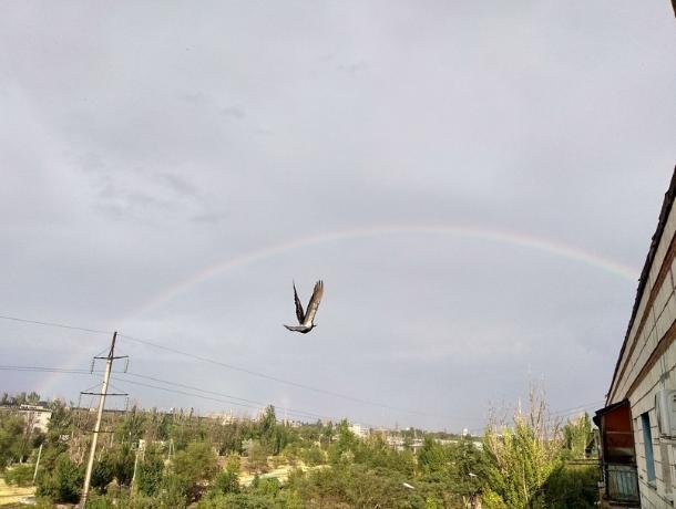 Переменную облачность и дождь прогнозируют в Волжском