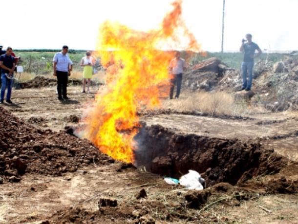 Около 300 килограммов марихуаны сожгли с «поля чудес» под Волжским