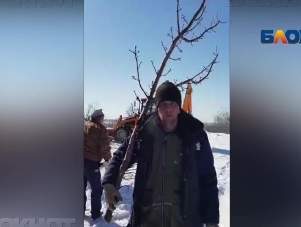Мэрия Волжского не принимала участия в «благоустройстве» в поселке Деревянный